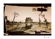 Thar desert, India #3