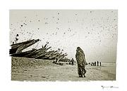 Locusts plague, Mauritania #6