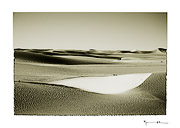 Sahara desert, Mauritania #14