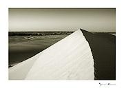 Dunes, Chinguetti, Mauritania #15