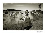 Peul shepherd, Mali #18